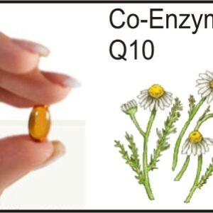 Estudio sobre Coenzima Q10 y fibromialgia