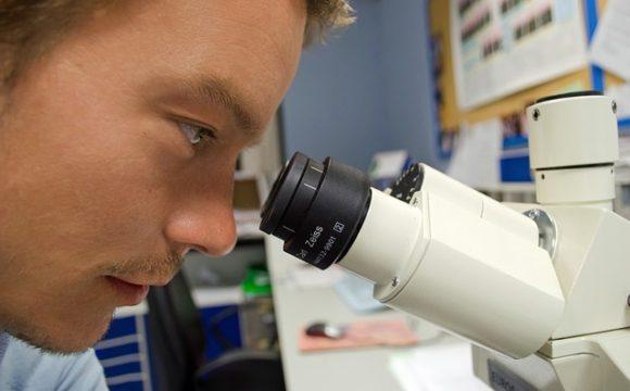 Recientes estudios científicos sobre Síndrome de Fatiga Crónica