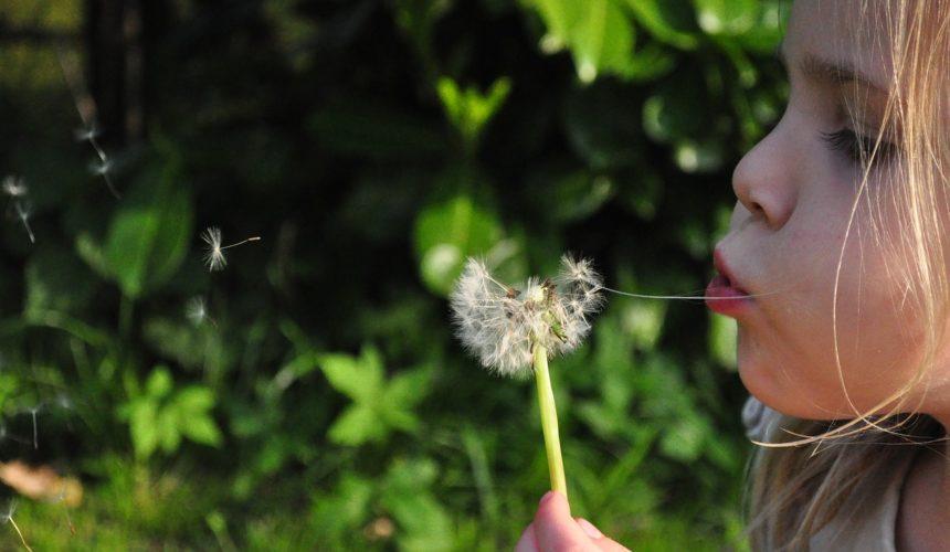 El 25% de la población infantil padece alergias